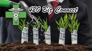 420 Biz Connect Banner