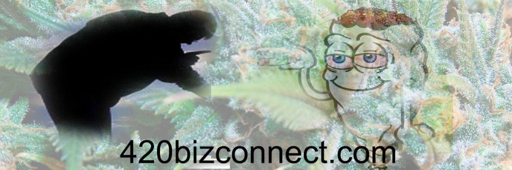 marijuana business california