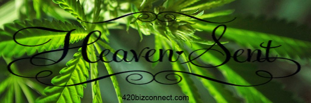 420 Biz Connect - California Business Experts