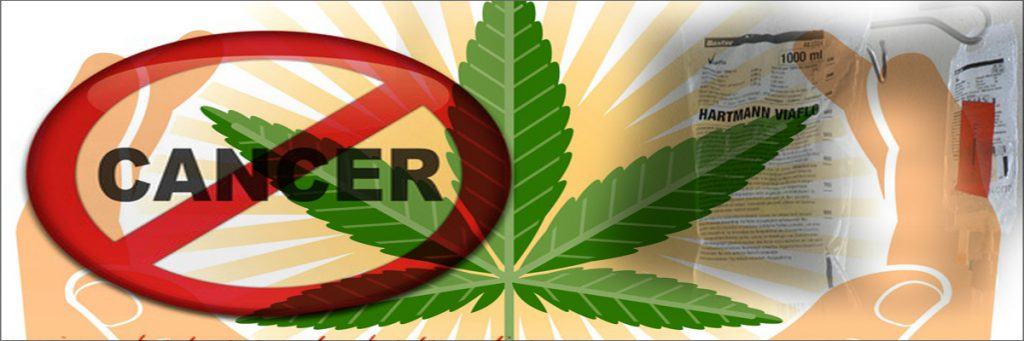how cannabis kills cancer